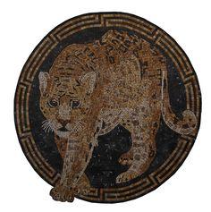 #jaguar