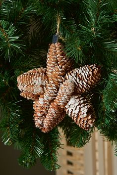 Another pine cone idea, dip in colored glitter to match any holiday decor