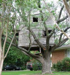 Tree houses (31 pics)