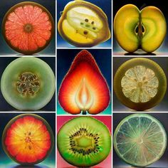 The beauty of fruit  ( via La Bioguia on fb ) Cuadro para la conica