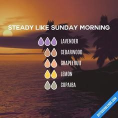 Steady Like Sunday Morning - Essential Oil Diffuser Blend