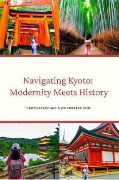 Kyoto has a lot of things to offer. Torii Gate, Bamboo Tree, Buddhist Temple, History Books, Stunning View, Kyoto, Night Life, Japan, Historia