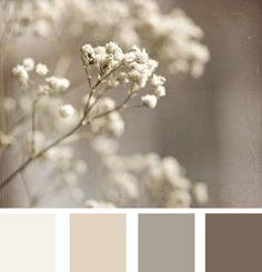 Soft wheats... Very neutral colour tones. Possible color palette for new house?