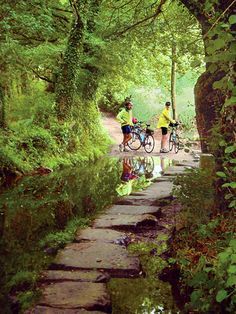"""Cycle the Camino de Santiago, Spain bike tours  Easy Rider Tours is proud to be named """"The Leading U.S.-based Tour Outfitter""""   by Frommer's Spain 2012 guidebook"""