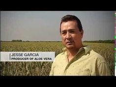 Aloe Vera Ecológico LR Health&Beauty España Gel Bebible Instituto Fresen...