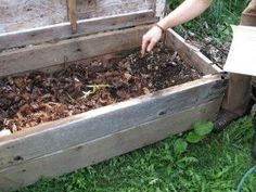 how to make a wormery... You don't even need a garden – you can keep your wormery indoors and produce compost for houseplants and window boxes. A wormery is also a great way to introduce children to gardening and the environment as they can help to build and care for the wormery.