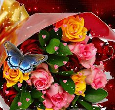 To my dear sister, flowers for you♡♡♡, Flowers Gif, Beautiful Rose Flowers, Beautiful Gif, Love Rose, Beautiful Butterflies, Gif Bonito, Beau Gif, Motion Images, Gif Photo