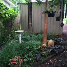 The music garden at Birchfield