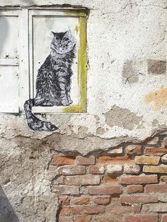 Street Art...looks just like our cat, Polly Esther.