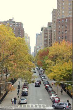autumn in New York City...