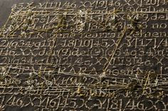 Taupe Karyotype