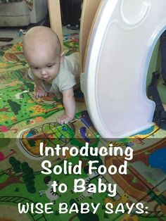 Introducing Solid Food to Baby or Baby's Crash Course to the Dinner Table - tips by the-wise baby