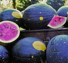20 Heirlooms Moon And Stars Watermelon Seed By Stonysoil Seed Company Stonysoil Seed Co. http://www.amazon.com/dp/B00C4MYX64/ref=cm_sw_r_pi_dp_wQsJtb0D1J8RD6FZ