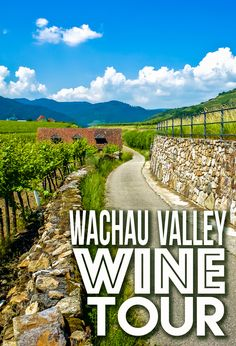 Excited for a day in the countryside of Vienna, Austria, we booked an incredible Wachau Valley wine tour that we won't soon forget.