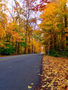 Fall in Wayne County, Indiana. This is Glen Miller Park, Richmond, IN.