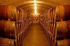 DO emporda - castell de peralada. Costa Brava. Catalonia Costa, Self, Wine Cellars