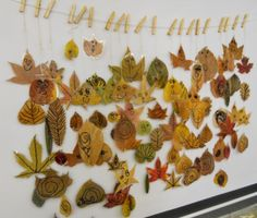 Collect leaves, press them, colour, and laminate