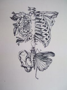 Tat idea..Love it!! ..butterfly wing on bottom though