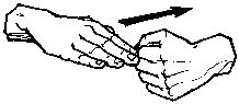 American Sign Language - Full