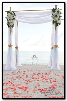 florida beach wedding decor image 1 - Bamboo Canopy 2015
