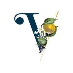 Bottle label for our vibrant, botanical green citrus distilled spirit - LIMON Create Labels, Non Alcoholic, Bottle Labels, Vermont, Cocktails, Drinks, Vegan Friendly, Nature, Bottles