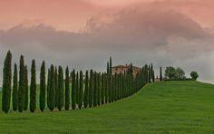 Осенняя Тоскания... Фотографии засыпающей природы.