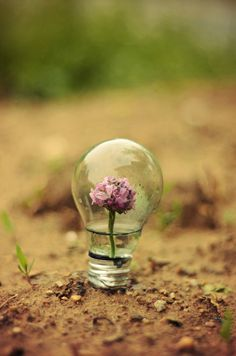 real life light bulb by Adrian Limani on 500px