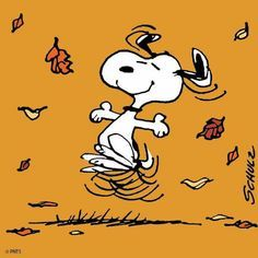On November Snoopy will receive a star on the Hollywood Walk of Fame!