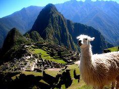 Machu Picchu: Machu Picchu, Peru