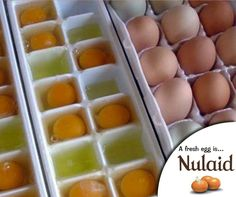 #TuesdayTip: Make Eggs Last Longer -To possibly keep eggs from spoiling before their time, avoid the in-the-door egg storage containers and keep the eggs on a shelf instead or you can also freeze eggs in ice cube trays to make them last longer. #Nulaid