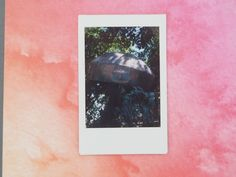 Instax A Day Week One 30.5.19. Sloane Square. Chelsea in Bloom for the Chelsea Flower Show 2019. Waves On The Beach, V & A Museum, Chelsea Flower Show, Harry And Meghan, Home Photo, Summer Of Love, Bloom, Floral, Flowers