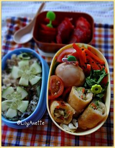Come to think of it, spring rolls would be perfect for a bento.