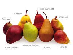 Birnensorten
