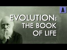 I have to write an essay on biological evolution any ideas?