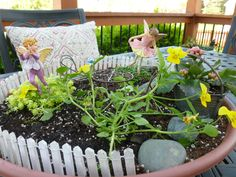 """""""Fairy Garden""""  . . . We made this using a deep plant saucer, small plants (stonecrop, violas, mini shamrock) and miniature garden accessories that we found at our favorite garden center (Family Tree in Shawnee, KS). Be careful not to overplant as ours became quite a jungle last year and the little items were lost in the growth.  This is a fun activity for kids (and grownups) of all ages.  **Be prepared to bring indoors during extreme heat/weather."""
