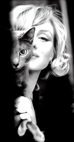 (1) History in Moments (@historyinmoment) | Twitter  Marilyn Monroe russian blue kitty