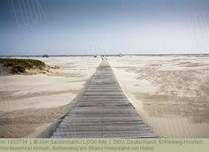 Deutschland, Schleswig-Holstein, Nordseeinsel Amrum, Bohlenweg am Strand Kniepsand von Nebel.