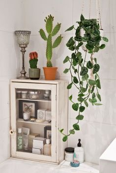 Indoor plants for bathroom house plants for bathroom best indoor plants for bathroom bathroom design bathroom . indoor plants for bathroom Bad Inspiration, Bathroom Inspiration, Interior Inspiration, Bathroom Ideas, Bathroom Organization, Design Bathroom, Bathroom Remodeling, Bathroom Hacks, Bathroom Storage