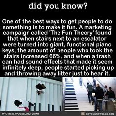 One of the best ways to get people to do something is to make it fun. A marketing campaign called 'The Fun Theory' found that when stairs next to an escalator were turned into giant, functional piano keys, the amount of people who took the stair The More You Know, Good To Know, Wtf Fun Facts, Random Facts, Funny Facts, Random Stuff, Crazy Facts, Happy Facts, Trivia Facts