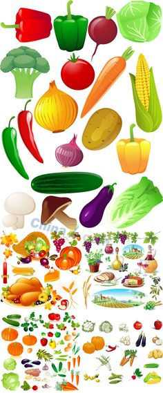 Fresh fruits and vegetables vector material download