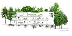 《日本建築Case Studies》森林裡的嬉遊曲 @ 綠‧建築家 :: searchouse.net