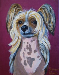 Yantara, Chinese crested dog by Rohiniatma on DeviantArt
