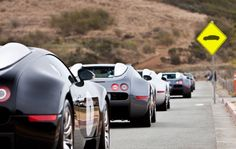 Bugatti Line! -The line of Multi-millionaires