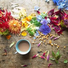 """5ftinf """"#5ftinftable"""" Dhalias, Hydrangea, clover Good Morning Cards, Good Morning Coffee, Table Flowers, Love Flowers, Image Drink, Coffee Shot, Tumblr, Latte Art, Over The Rainbow"""