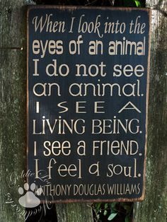 LOVE ANIMALS!