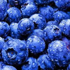 Blue berries help to stimulate & contribute to increase brain power and function, helping people stay sharp and focused. They are also helpful in protecting against certain forms of cancer & even heart disease.