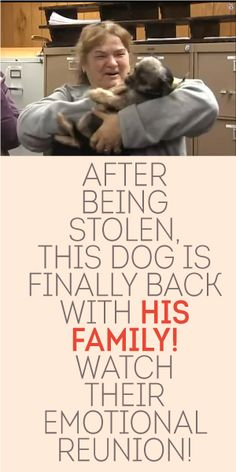 After Being Stolen, This Dog Is FINALLY Back With His Family. Watch Their Emotional Reunion! <3