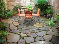 patio stones with moss