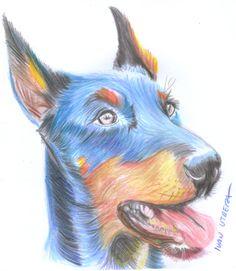perro en lapices de colores
