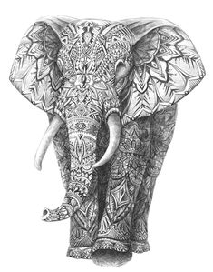 DRAWING AZTEC ELEPHANT #graphic #art #hand drawing